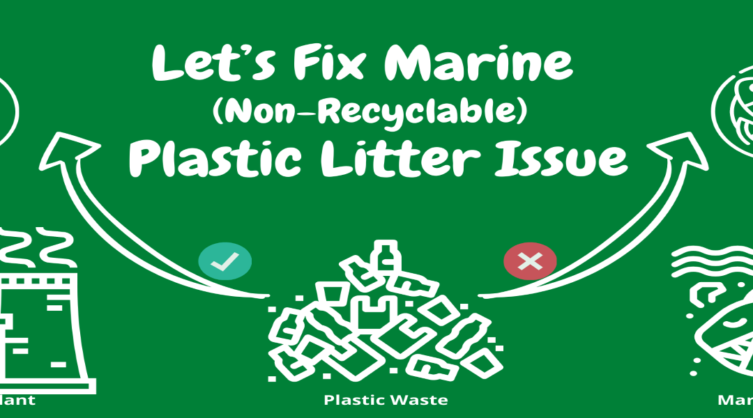 Let's Fix the Marine (Non-Recyclable) Plastic Litter Issue!