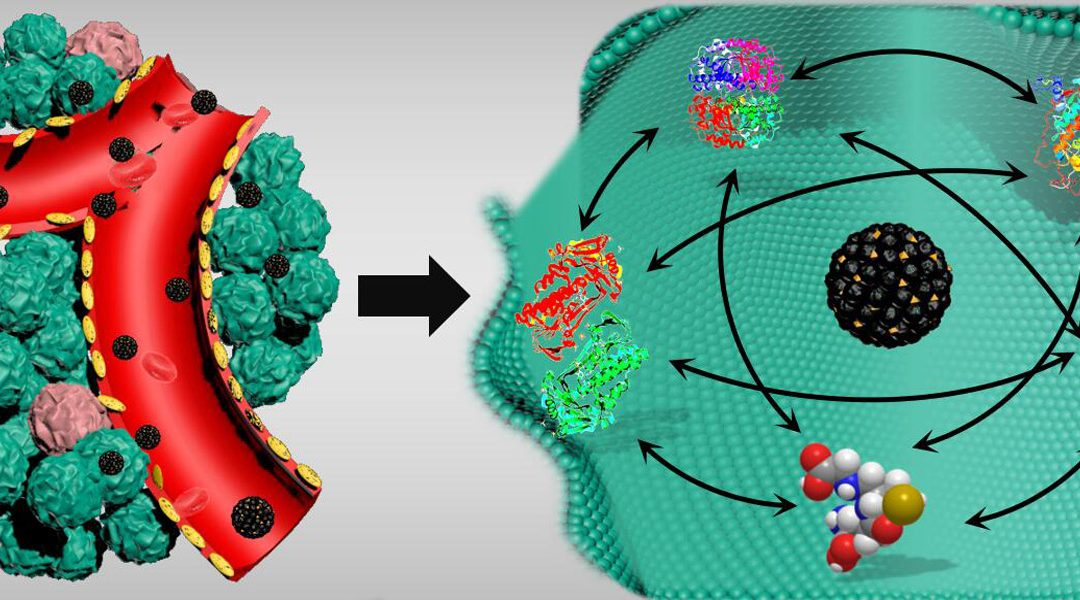 Breaking the Cooperation Among Molecules in Cancer Cells