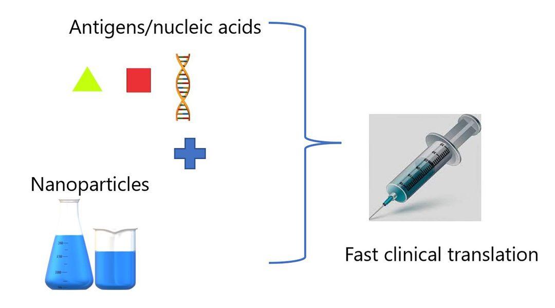 Hybrid Delivery Platforms for Vaccine Development